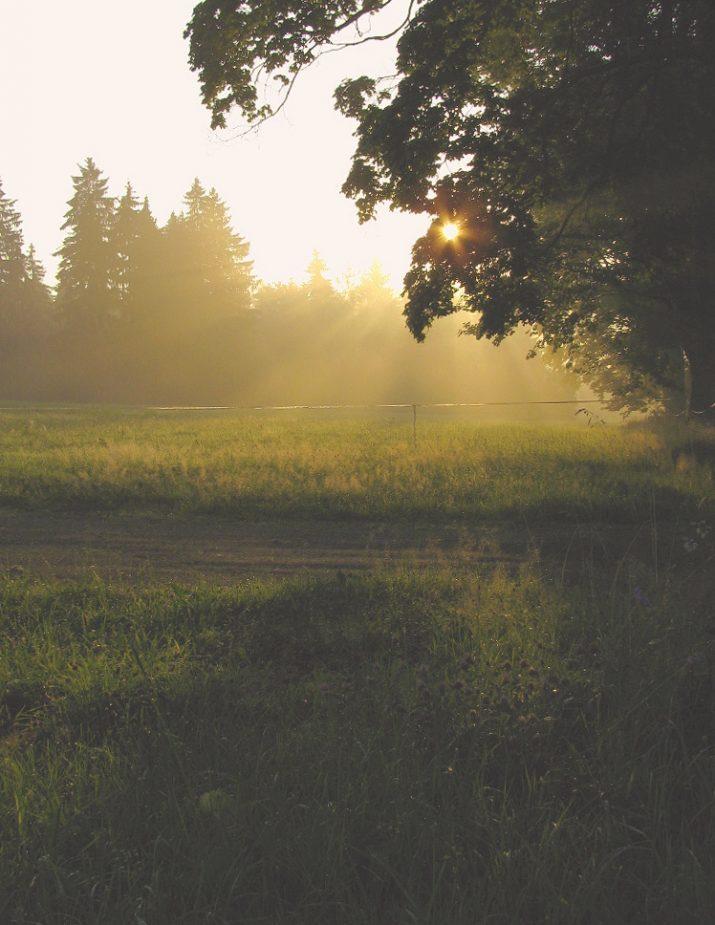 Velké ticho pří svítání