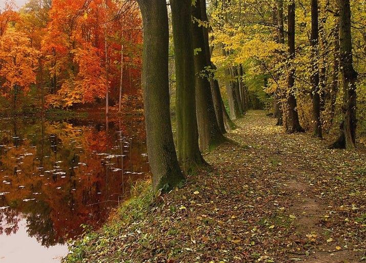 Podzim a jeho barvy